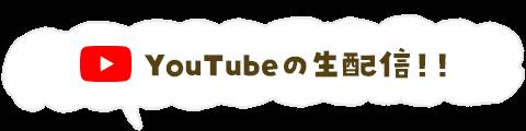 YouTubeの生配信!!